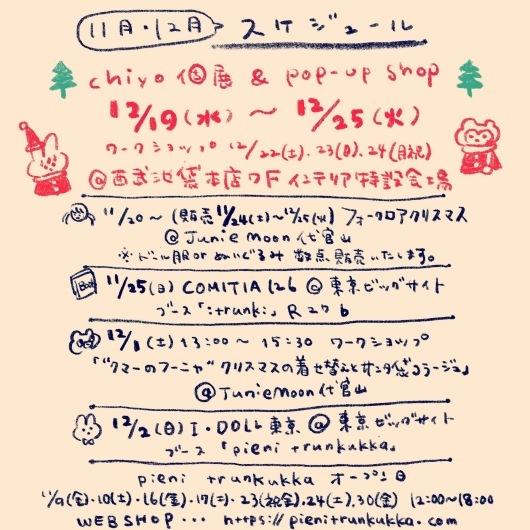 *11月と12月のスケジュール*_f0223074_13265057.jpg