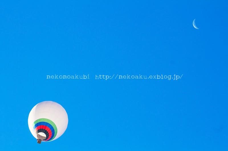 b0003512_09191102.jpg