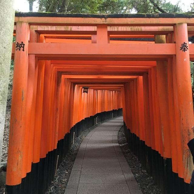 京都旅行2日目_c0193017_17200621.jpeg