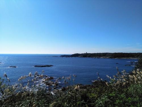 橋をかけろ!3段め 〜熊野の森に参上!〜_b0083620_00014107.jpg
