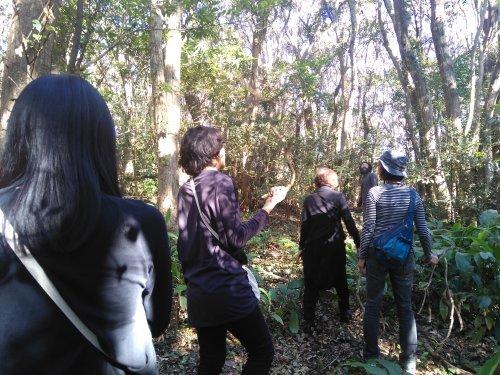 橋をかけろ!3段め 〜熊野の森に参上!〜_b0083620_00050043.jpg