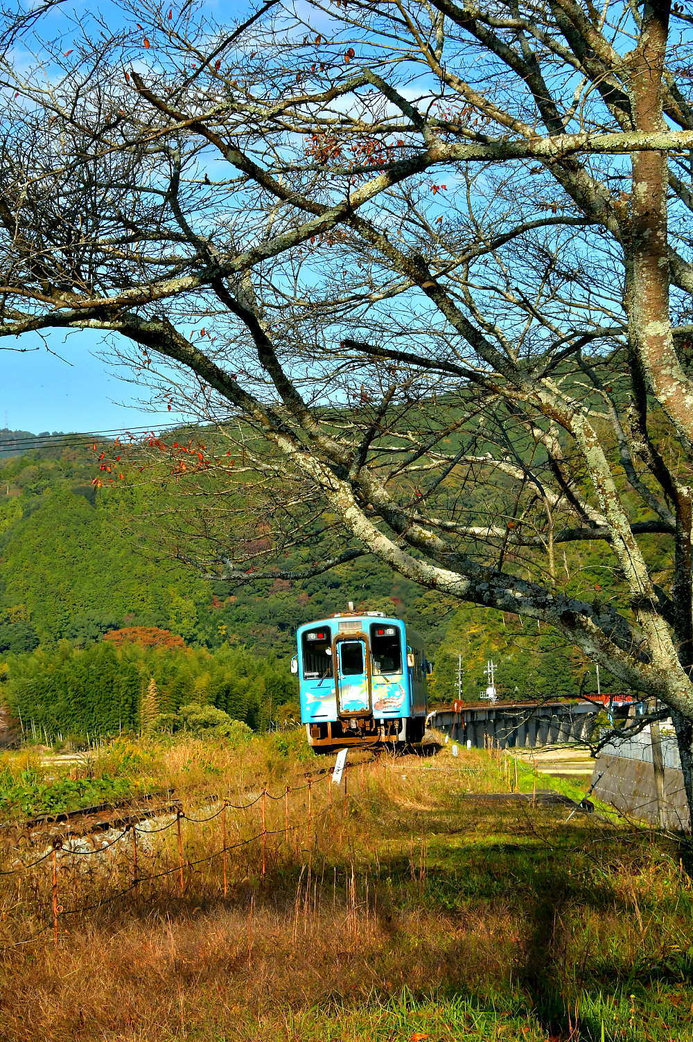 岩徳線と錦川鉄道_a0251146_09465499.jpg