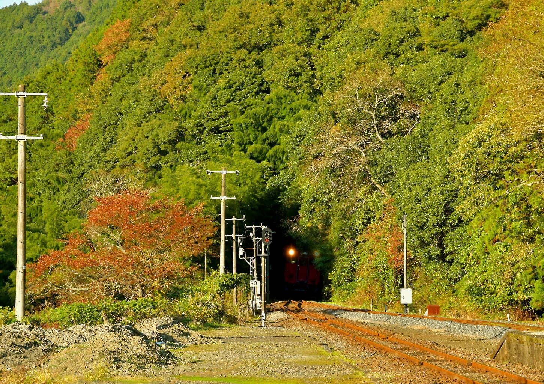 岩徳線と錦川鉄道_a0251146_20174418.jpg