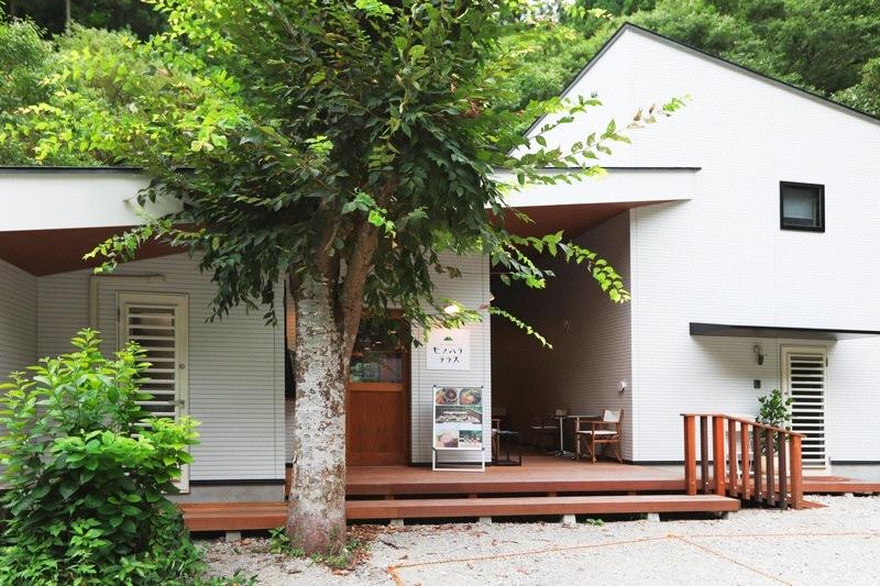 「山ごはんカフェヒノハラテラス」店舗付住宅_f0230666_09155786.jpg