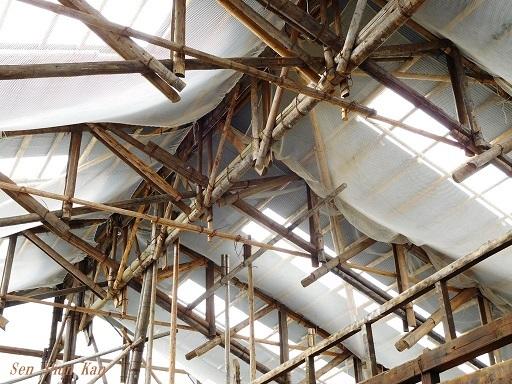 文化財建造物の保存修理 (黄檗山萬福寺 鐘楼・西方丈) 2018年11月2日_a0164068_15504767.jpg