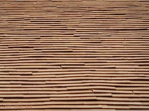 文化財建造物の保存修理 (黄檗山萬福寺 鐘楼・西方丈) 2018年11月2日_a0164068_15585084.jpg