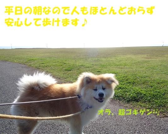 f0121712_00271710.jpg