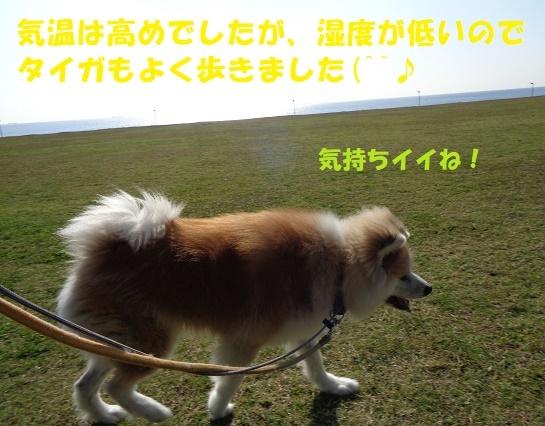 f0121712_00272232.jpg