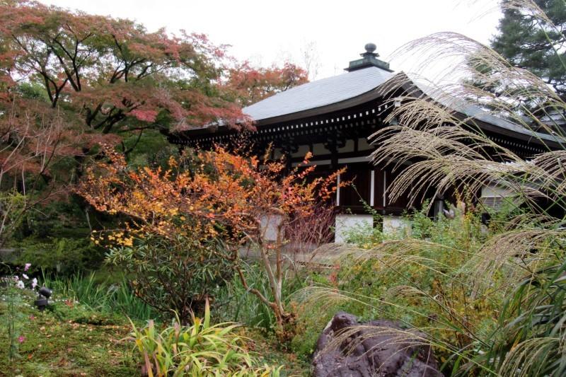 白沙村荘-橋本関雪記念館_e0048413_21220986.jpg
