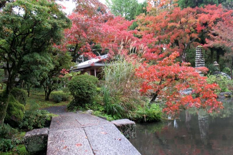 白沙村荘-橋本関雪記念館_e0048413_21224601.jpg