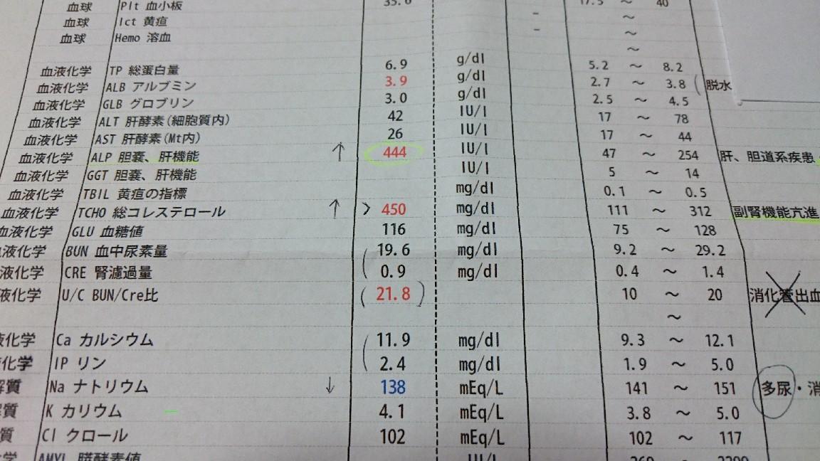 b0211924_20052027.jpg