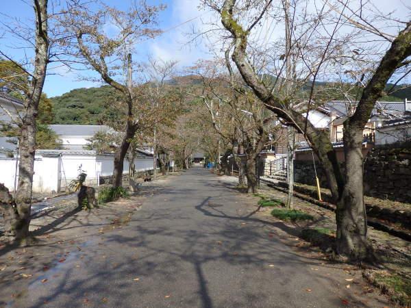 福岡県の秋月_f0337554_14210256.jpg