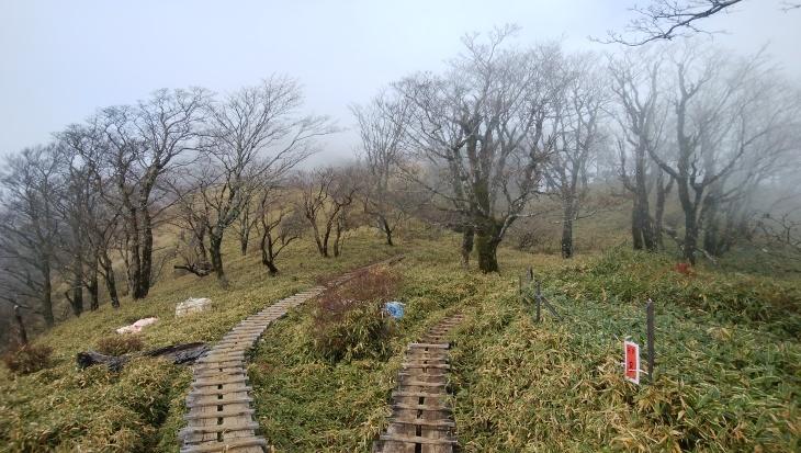 丹沢 ~秋の塔ノ岳・丹沢山・丹沢三峰巡り~_e0231387_19105230.jpg
