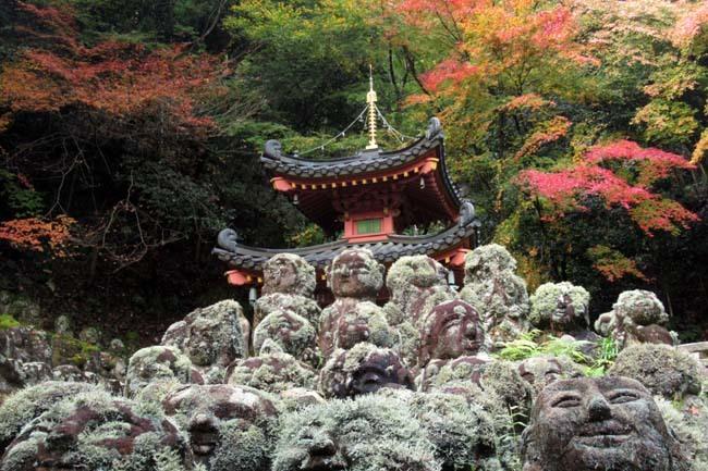愛宕寺(おたぎでら)紅葉の盛り_e0048413_22080373.jpg