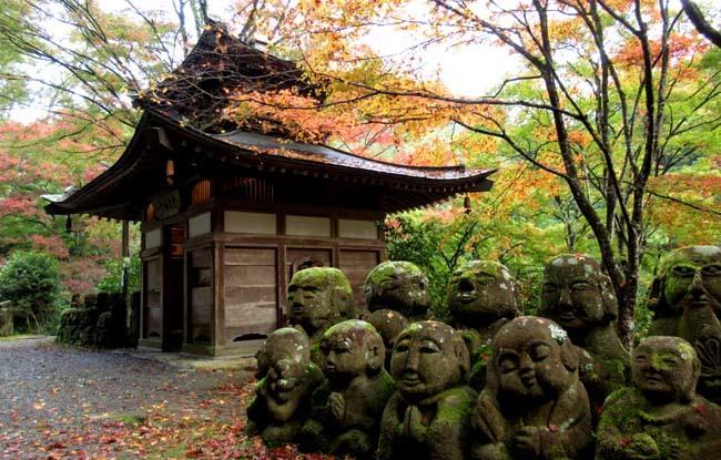 愛宕寺(おたぎでら)紅葉の盛り_e0048413_22081990.jpg