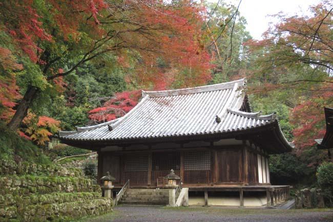 愛宕寺(おたぎでら)紅葉の盛り_e0048413_22082590.jpg