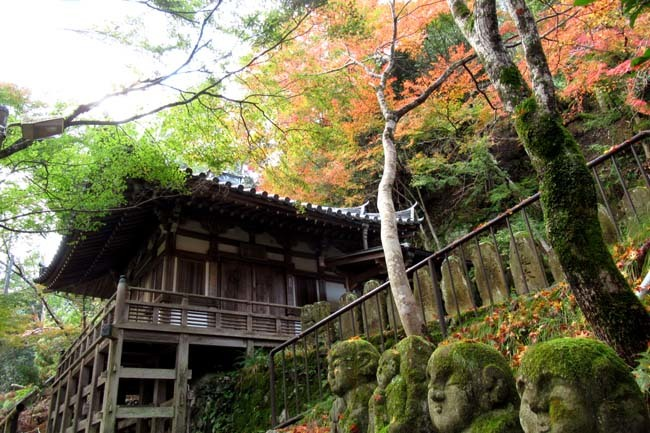 愛宕寺(おたぎでら)紅葉の盛り_e0048413_22083100.jpg