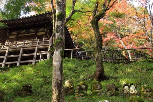 愛宕寺(おたぎでら)紅葉の盛り_e0048413_22083524.jpg