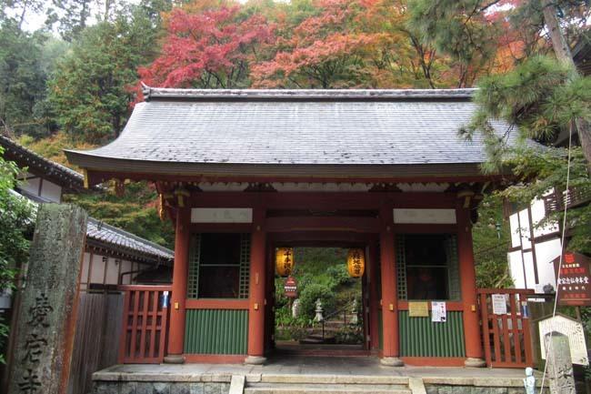 愛宕寺(おたぎでら)紅葉の盛り_e0048413_22084095.jpg