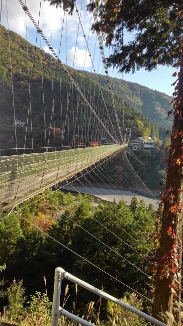 谷瀬のつり橋_c0236632_00163116.jpg