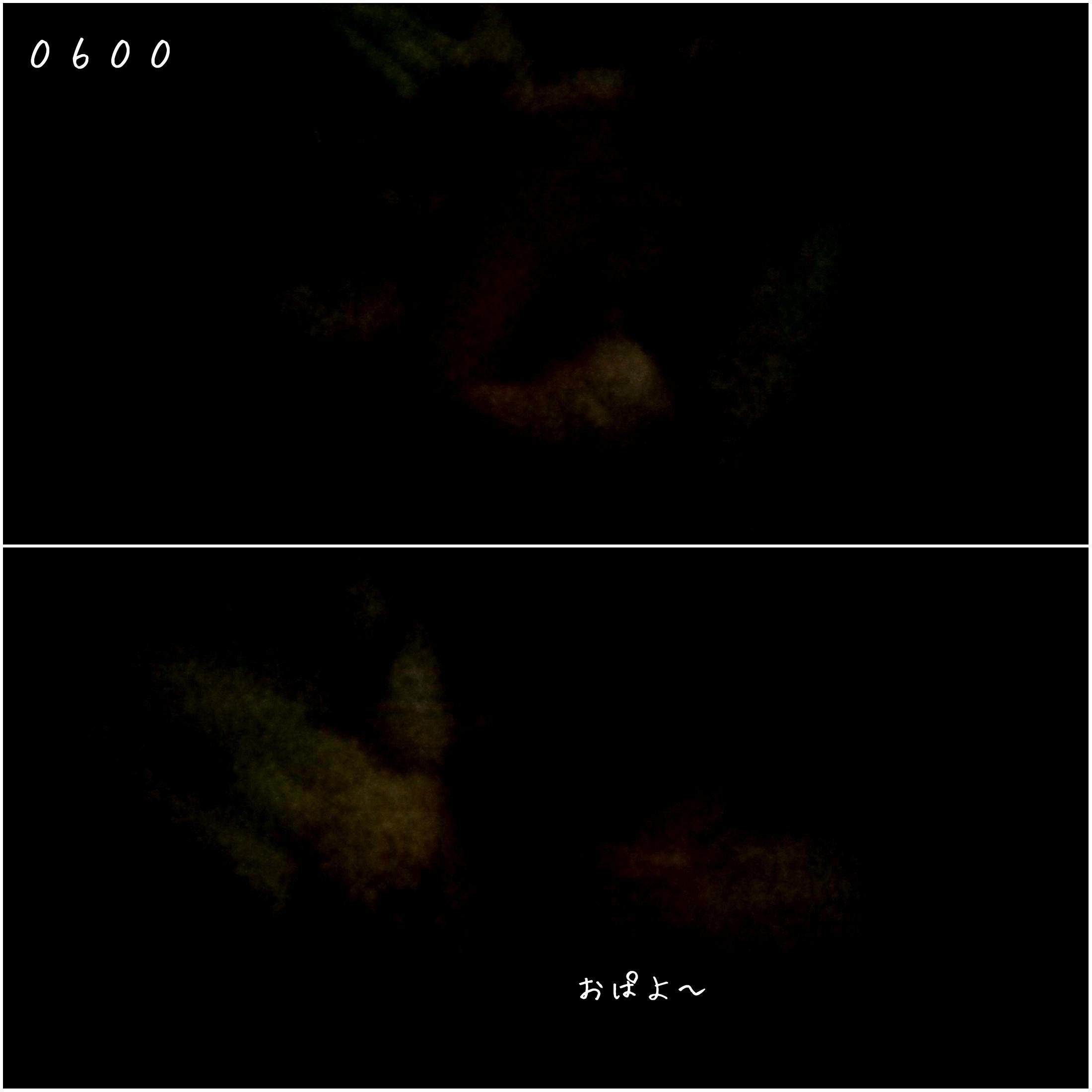 b0306158_12192103.jpg