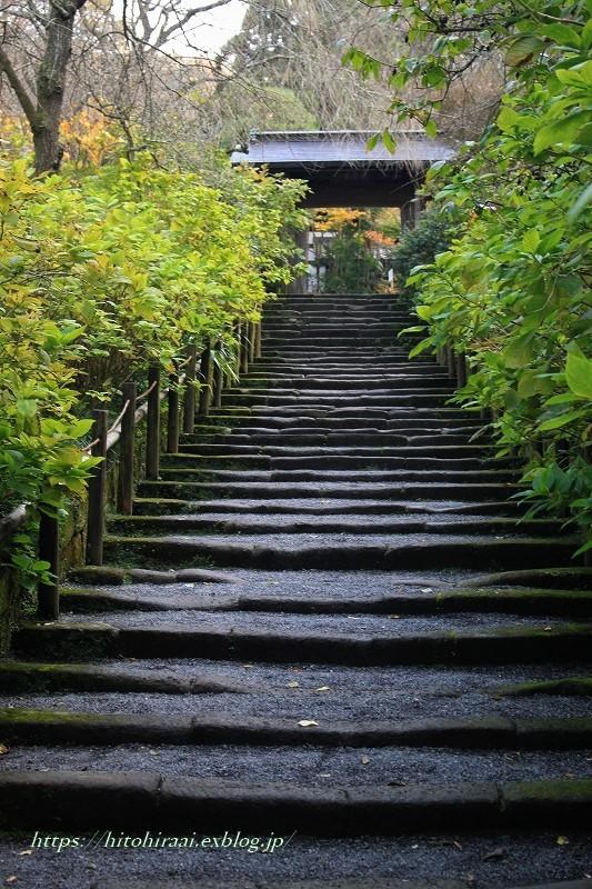 北鎌倉 明月院 秋模様_f0374092_22105560.jpg