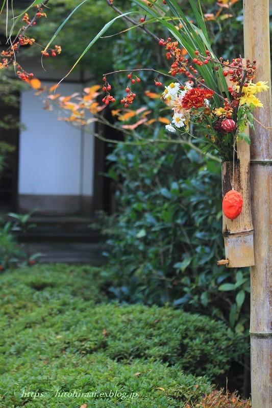 北鎌倉 明月院 秋模様_f0374092_22142727.jpg