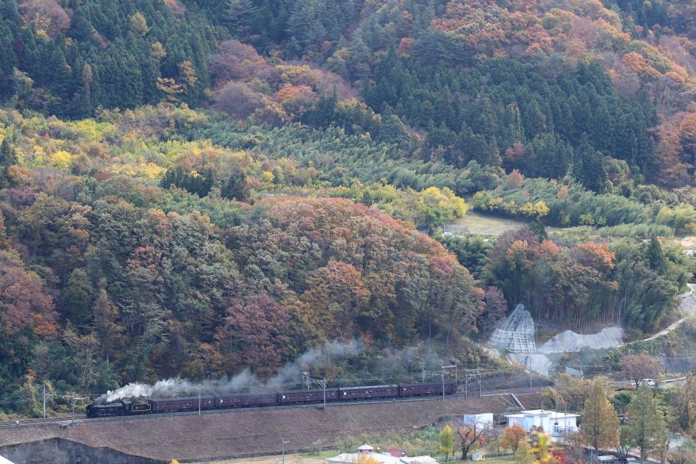 色づいた山の麓、彩られた汽車が走る - 上越線・2018年秋 -_b0190710_19063217.jpg