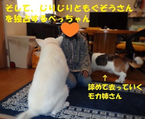 f0121712_00173434.jpg