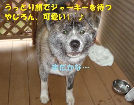 f0121712_01005987.jpg