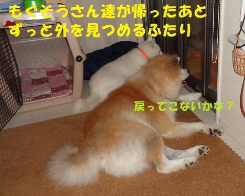 f0121712_01143008.jpg