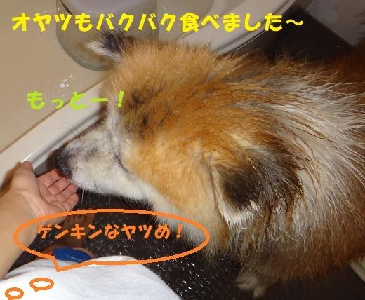 f0121712_14335281.jpg