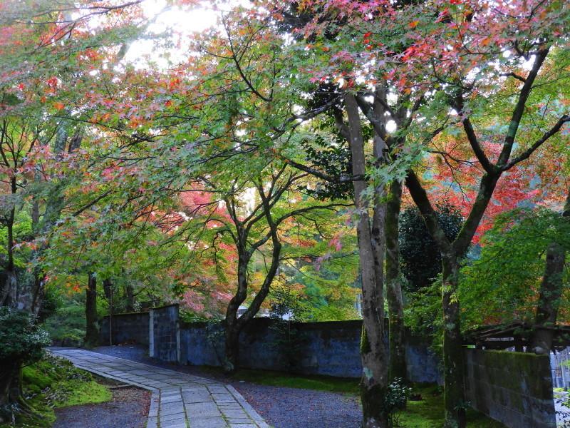 吟松寺と千束の紅葉_e0048413_20542694.jpg
