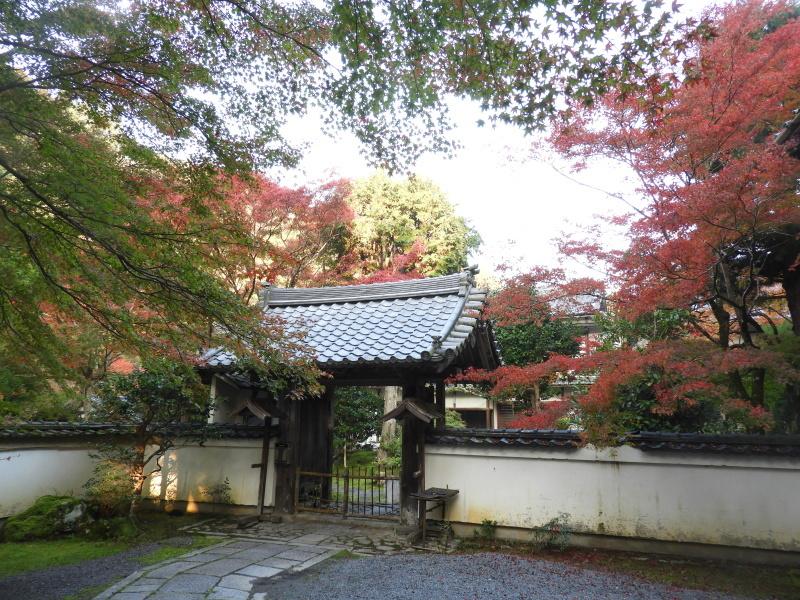 吟松寺と千束の紅葉_e0048413_20543335.jpg