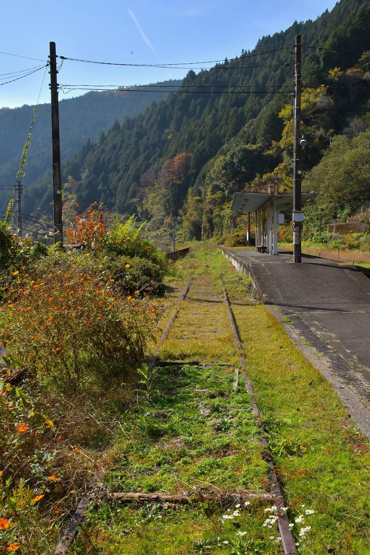 岩徳線と錦川鉄道_a0251146_22500539.jpg