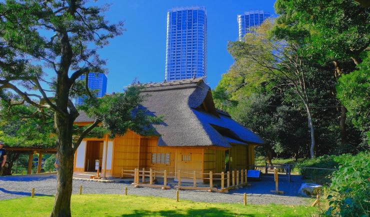 東京都中央区の公園_a0150260_19170722.jpg