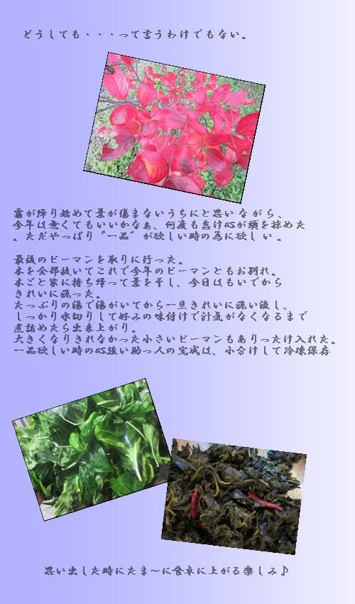 f0215591_18531251.jpg