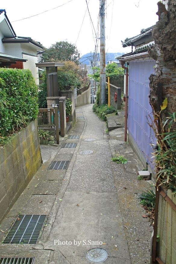 観音崎周辺の地域を散歩(2018年11月)_b0348205_09262923.jpg