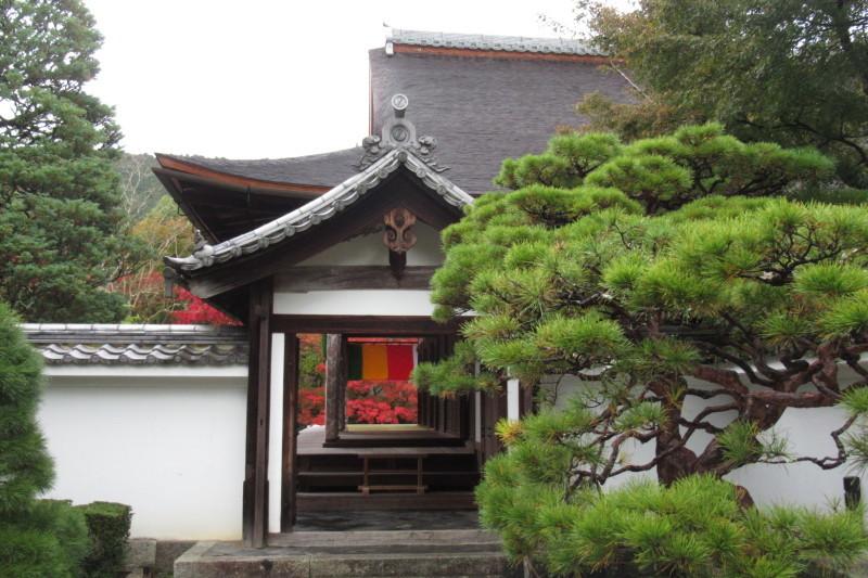 南禅寺 天授庵_e0048413_21491999.jpg