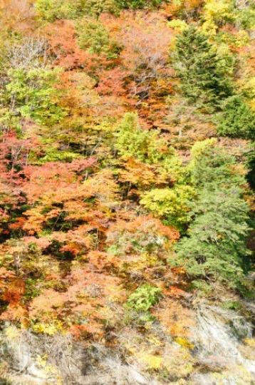 【鬼怒川 日光への旅 】_f0215714_16223442.jpg