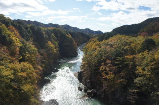 【鬼怒川 日光への旅 】_f0215714_16233689.jpg