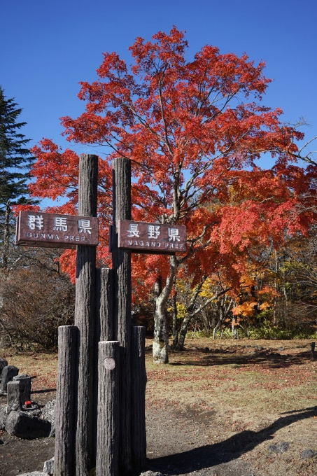 2018年軽井沢紅葉集_d0035921_11313478.jpg