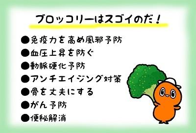 ブロッコリー収穫なのだ~!_c0259934_16371635.jpg