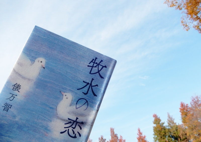 しらとりは何羽いる * How many white birds are in this tanka?_f0374041_11082252.jpg