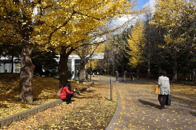 晩秋の中島公園_f0362073_15531579.jpg