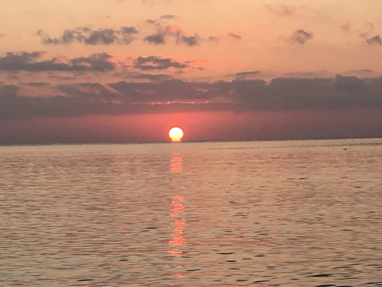 2018.11.11「ツールド沖縄」_c0197974_00460806.jpg