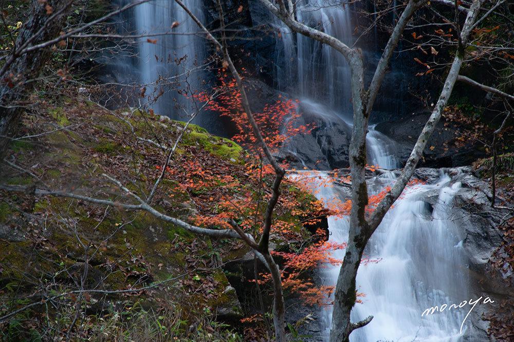 晩秋の滝_c0085877_06262192.jpg