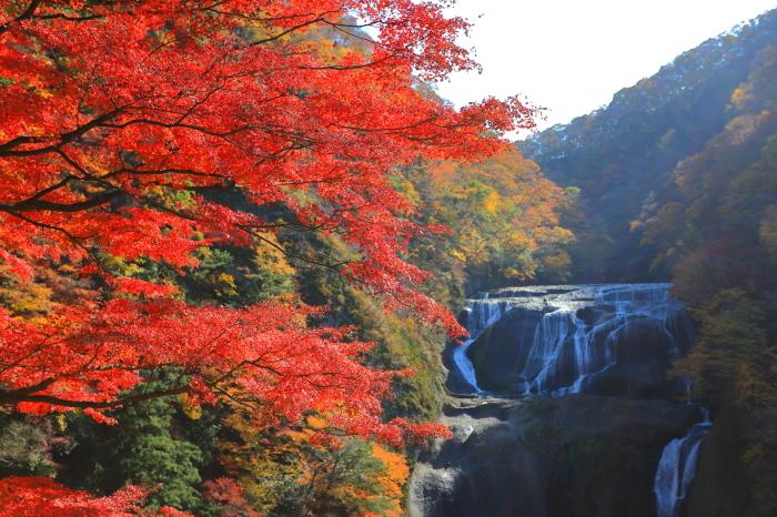 【袋田の滝】_f0348831_23112684.jpg