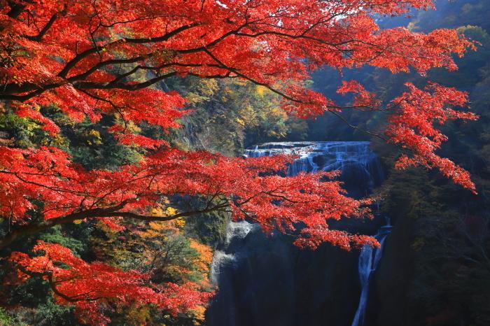 【袋田の滝】_f0348831_23113345.jpg