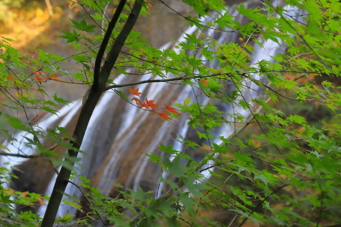 【袋田の滝】_f0348831_23114561.jpg